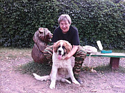 Кинолог: профессиональная дрессировка собак Москва